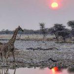 groepsreis Namibie