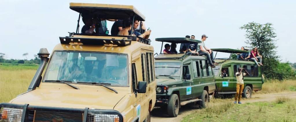 groepsreizen safari