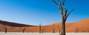 namibie-safari-aanbieding