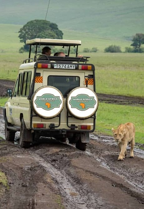 maatreis-tanzania